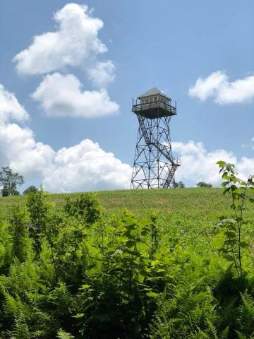 One of the few remaining fire towers